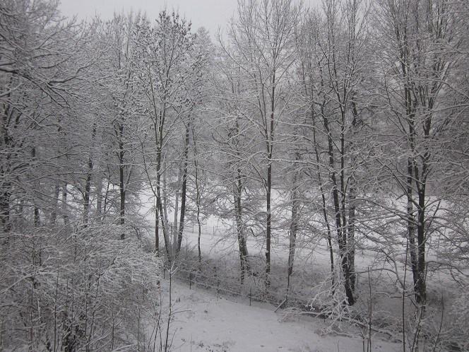 Caminhar na neve: uma atividade bem comum no inverno daqui.