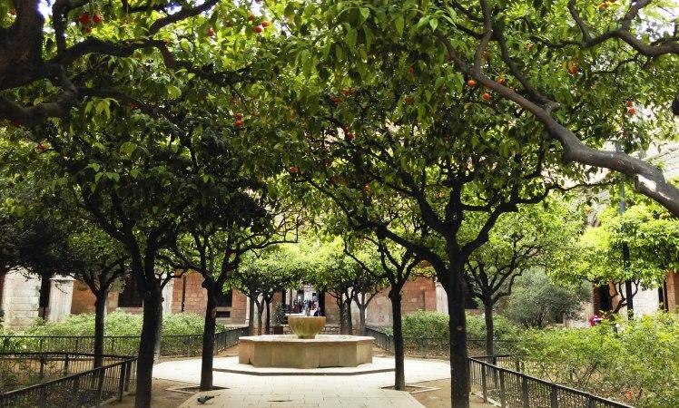 Jardins da Biblioteca Nacional da Catalunya
